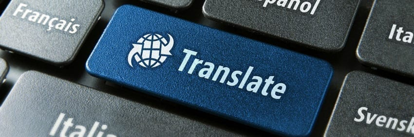 translation professional