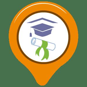 degree translation services
